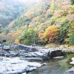 秋の岡山は奥津もみじ祭りでライトアップと日帰り温泉を楽しむ